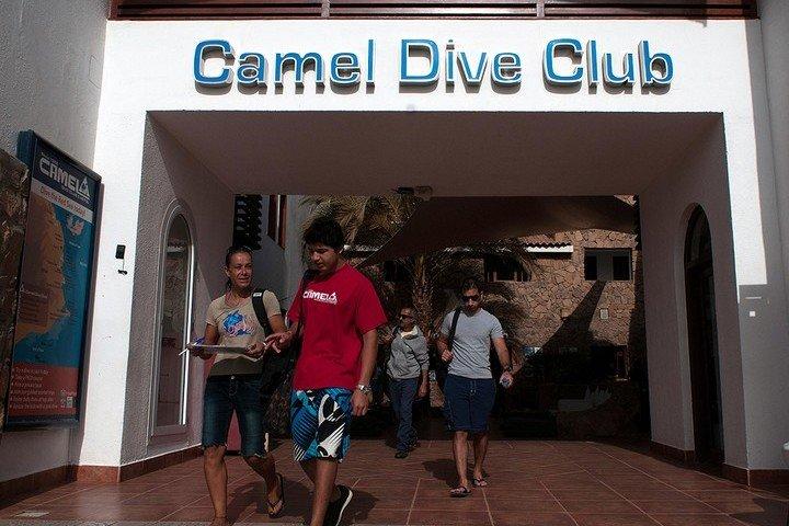 Camel Dive Club Sharm el Sheik Egypte
