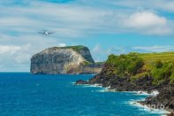 Faial - Dive and Travel