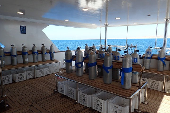 Big Blue Liveaboard duikdek Rode Zee Egypte