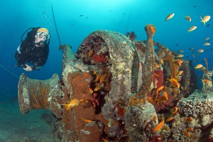 ow big blue liveaboard - wreck