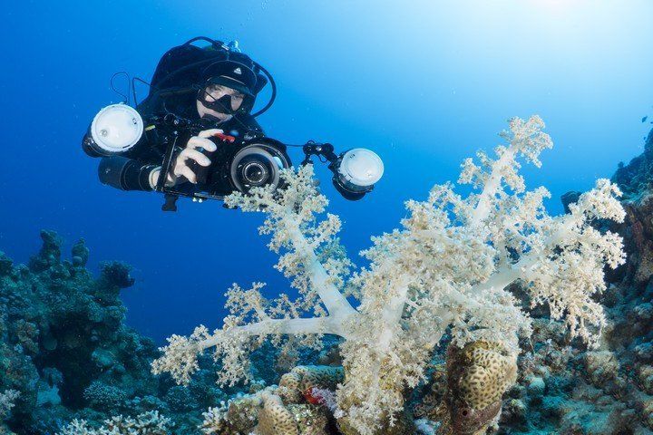 ONK Shoot Out On Holiday Dive and Travel