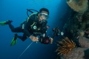 Murex Dive Resort - rif Bunaken National Park