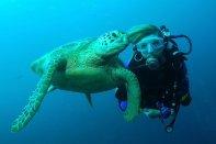 Sipadan Diving - Duiker met schildpad