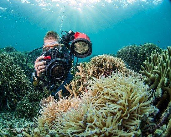 Dive And Travel Duikvakanties Beleef De Wereld Onderwater