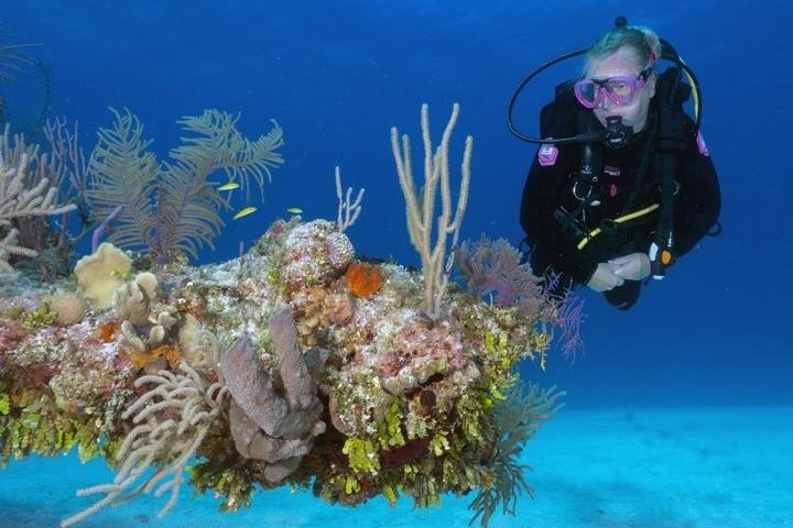 Bahamas Karin Brussaard